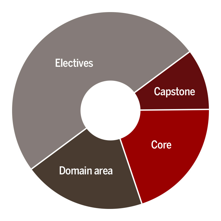 A pie chart with electives, capstone, core, and domain area sections