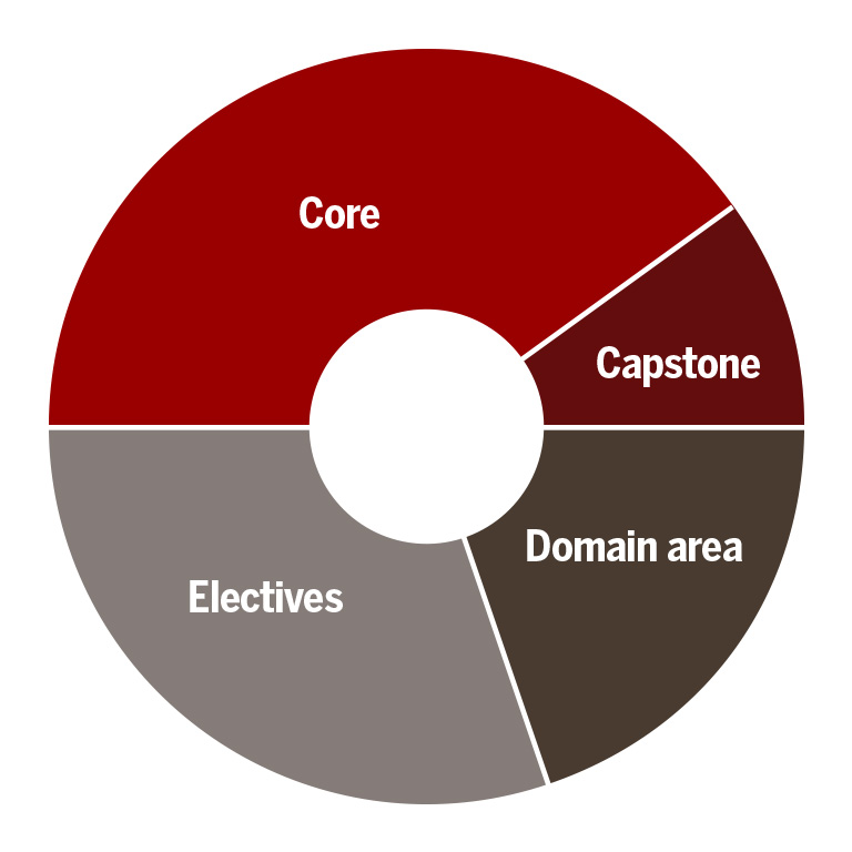 A pie chart with core, capstone, domain area, and electives sections