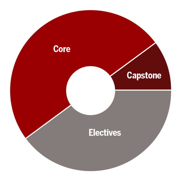 A pie chart with core, capstone and electives sections